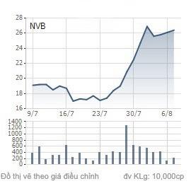 Ngân hàng NCB: Thị giá cổ phiếu NVB quá lệch so với chất lượng tài sản thấp yếu - Ảnh 3