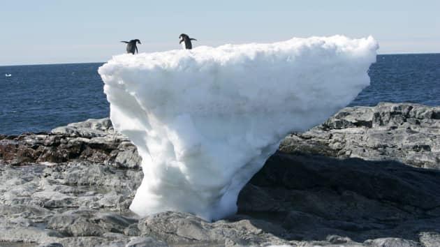 Kiểm toán PwC: Biến đổi khí hậu là vấn đề 'đau đầu' nhất kể từ sau Thế chiến II - Ảnh 1