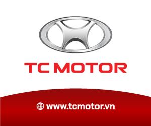 tc-motor-2