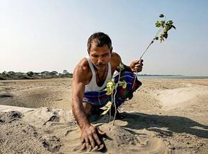 Người đàn ông hơn 40 năm biến đất khô cằn thành rừng xanh mướt