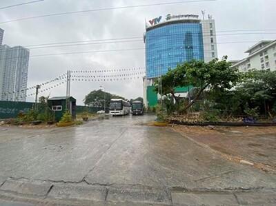 Dải cách ly cây xanh KĐT Mễ Trì Hạ bị lấn chiếm: Cần phải xử lý nghiêm hành vi vi phạm