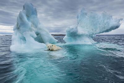 Mỹ trở lại 'cuộc đua' chống biến đổi khí hậu