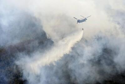Nhật Bản: Hỏa hoạn nghiêm trọng thiêu rụi ít nhất 76 ha rừng gần Tokyo