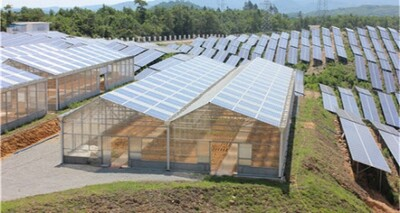 Quảng Trị phát triển năng lượng tái tạo từ sự khắc nghiệt của thiên nhiên