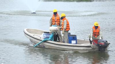 Bộ Tài nguyên và Môi trường: Nước hồ Tây đang có dấu hiệu bị ô nhiễm