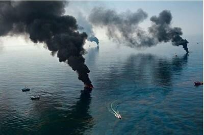 Hành động phá hủy môi trường là hành vi phạm tội