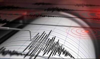 Nhật Bản: Tỉnh Fukushima rung chuyển do động đất
