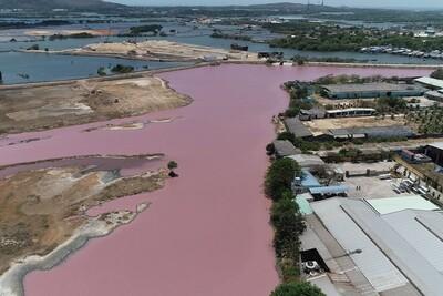 Sẽ kiểm tra toàn bộ cơ sở chế biến hải sản sau sự cố nước đổi màu tím tại Bà Rịa - Vũng Tàu