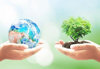 Các nhà lãnh đạo thế giới kêu gọi tăng cường hành động vì khí hậu