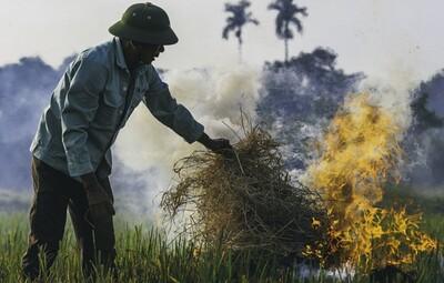 Hà Nội ô nhiễm không khí nghiêm trọng vì khói rơm rạ
