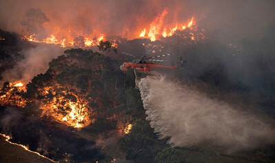 Mối nguy hại sức khỏe do ô nhiễm không khí từ cháy rừng