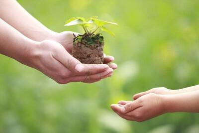 Bộ TN&MT xây dựng Thông tư quy định chi tiết một số điều của Luật Bảo vệ môi trường