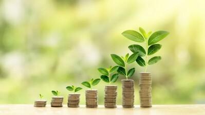 Tăng trưởng xanh: Cần chính sách hấp dẫn để thu hút tài chính tư nhân