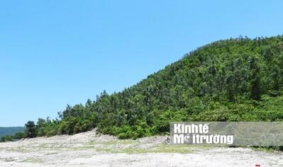 Hà Tĩnh xin 'đổi' 24 ha đất rừng làm Nhà máy nhiệt điện Vũng Áng II