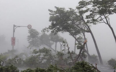 Bão số 3 giật cấp 10 tiến vào Biển Đông, gây mưa lớn khu vực Bắc Bộ
