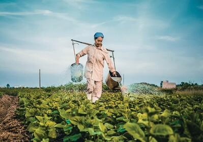 Dự án 30 triệu USD chống biến đổi khí hậu ở Nam Trung Bộ và Tây Nguyên