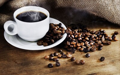 Cà phê xuất khẩu cao nhất 4 năm qua