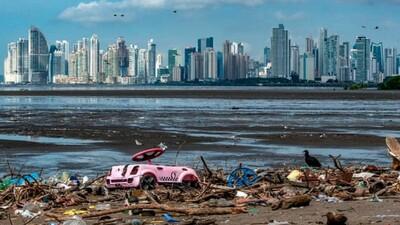 Cam kết ngăn chặn tàn phá thiên nhiên trước hội nghị thượng đỉnh của Liên hợp quốc